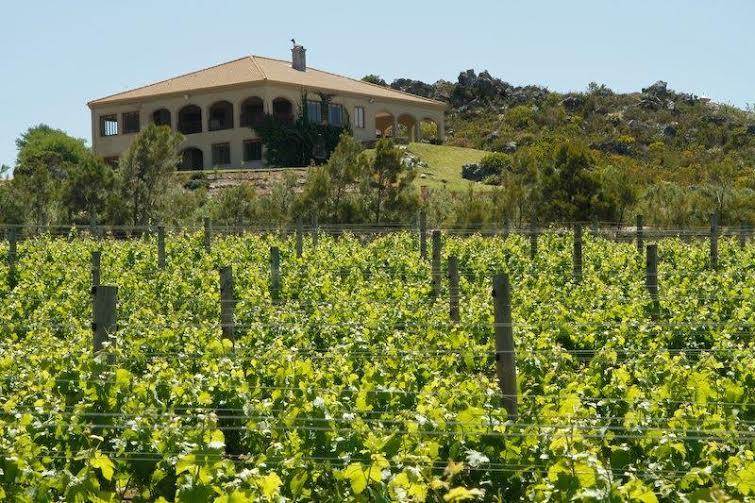 Barton Vineyards