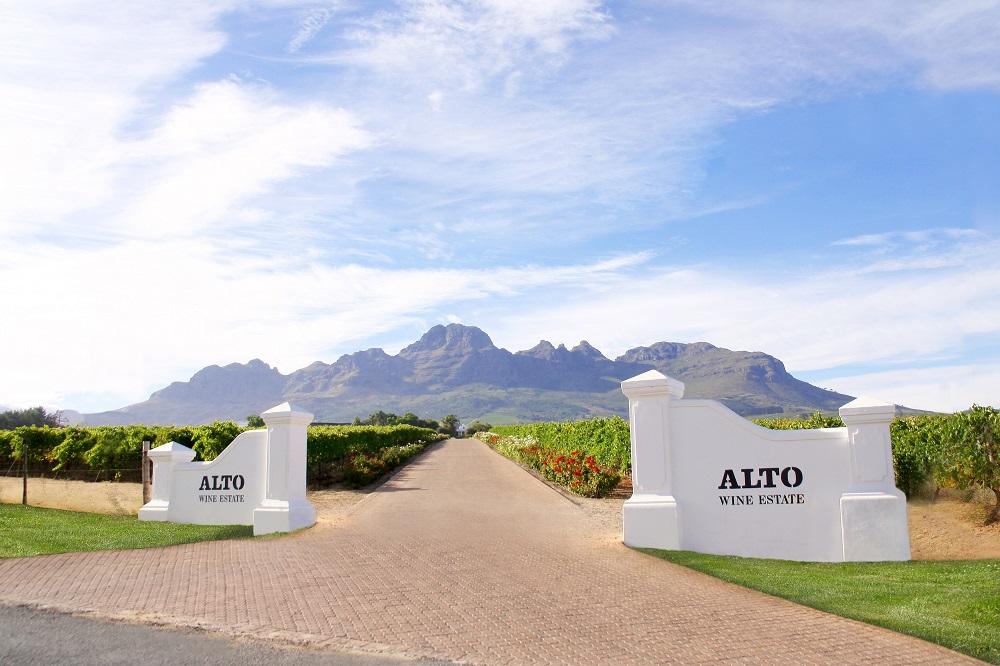 Alto Winery